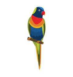 Rainbow lorikeet exotic parrot in flat design vector