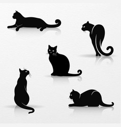 set stylized silhouettes cats vector image