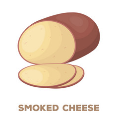 smoked cheesedifferent kinds of cheese single vector image
