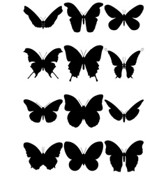 butterfly silhouette set vector image vector image