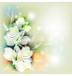 Bouquet lily in color vector image vector image