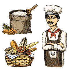 culinary boss chef cooker baker in apron bag vector image