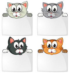 Cute cats with blank papers vector