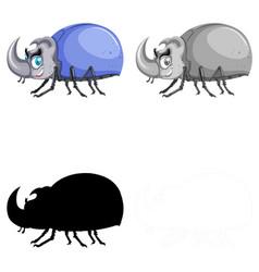 set beetle on white background vector image