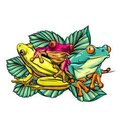 Various frogs cartoon design vector