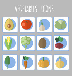 vegetables iconeps vector image