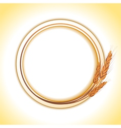 Wheat border vector