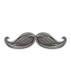Hand drawn mustache vector image