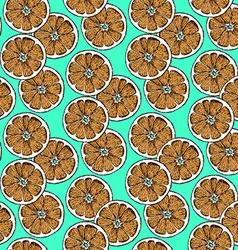 Sketch dry citrus in vintage style vector image