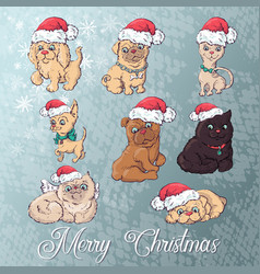 dog and cat in christmas hat cartoon new vector image