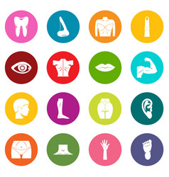 body parts icons many colors set vector image vector image
