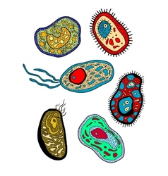 Amebas amoebas microbes and germs set vector image