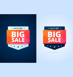 big sale badges vector image