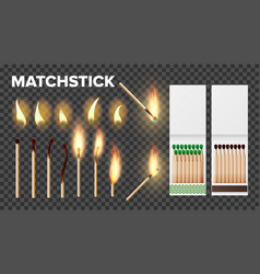 Burning matches in matchbooks flame set vector