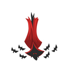 Creepy vampire bat in red cape vector