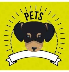 dog pet mascot icon vector image vector image