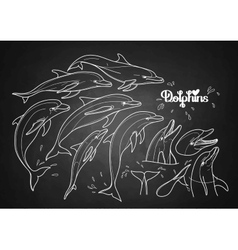 Graphic dolphins collection vector image