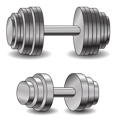 two dumbbells vector image