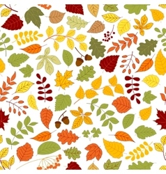 Autumn background with leaves seamless pattern vector image