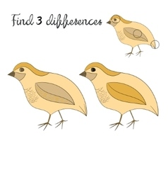 Find differences kids layout for game quail vector