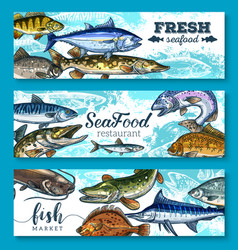 Fresh seafood and fish banners set vector