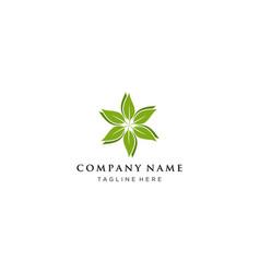 leaf or eco logo design concept vector image