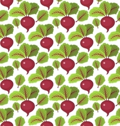 Beet seamless pattern Beetroot endless background vector image vector image