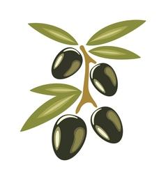 Black olives symbol vector