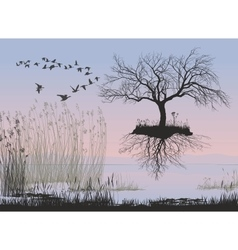 Flying apple tree without leaves with roots vector image