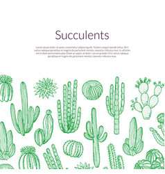 hand drawn wild cacti plants background vector image