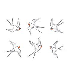 line art barn swallows birds in flight vector image