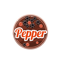 pepper spice vector image