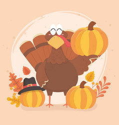 Turkey and pumpkin with pilgrim hat happy vector