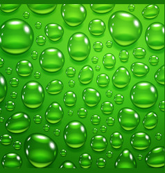 water drops on green background vector image vector image