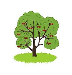 Cherry Tree Icon vector image