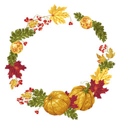decorative circle wreath frame elements in with vector image