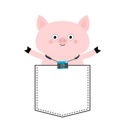 Pig face head in pocket photo camera cute vector