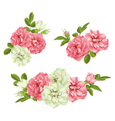 realistic pink rose set 3d roses vector image