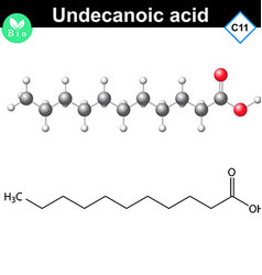 Undecanoic acid atomic structure vector image