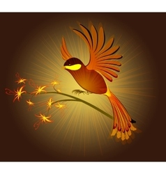 Bird of Paradise with flowers on a dark background vector image
