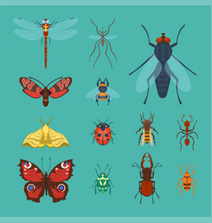 colorful insects icons isolated wildlife wing vector image vector image