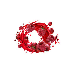 Cranberries and raspberries and a fruit juice vector