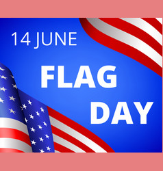 Flag day vector