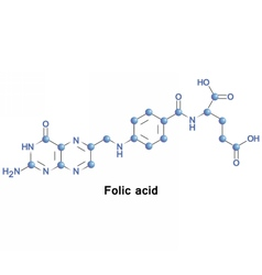 Folic acid folate vector