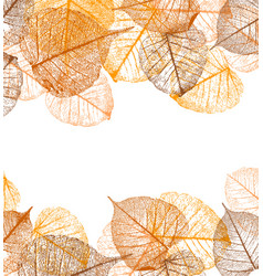 Frame of autumn leaves vector