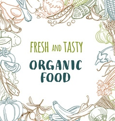Fresh organic spring summer vegetables frame vector image