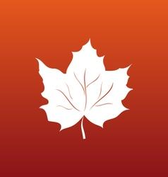 Maple Leaf on Orange Background vector image