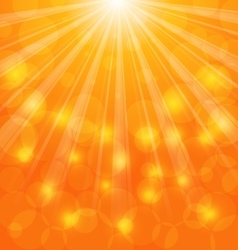 Abstract Background with Sun Light Rays vector image vector image