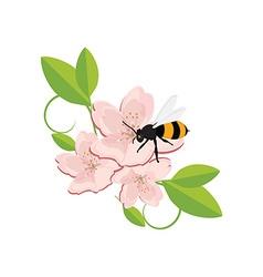 Bee on flower vector image vector image