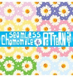 Chamomile pattern set with six seamless patterns vector image